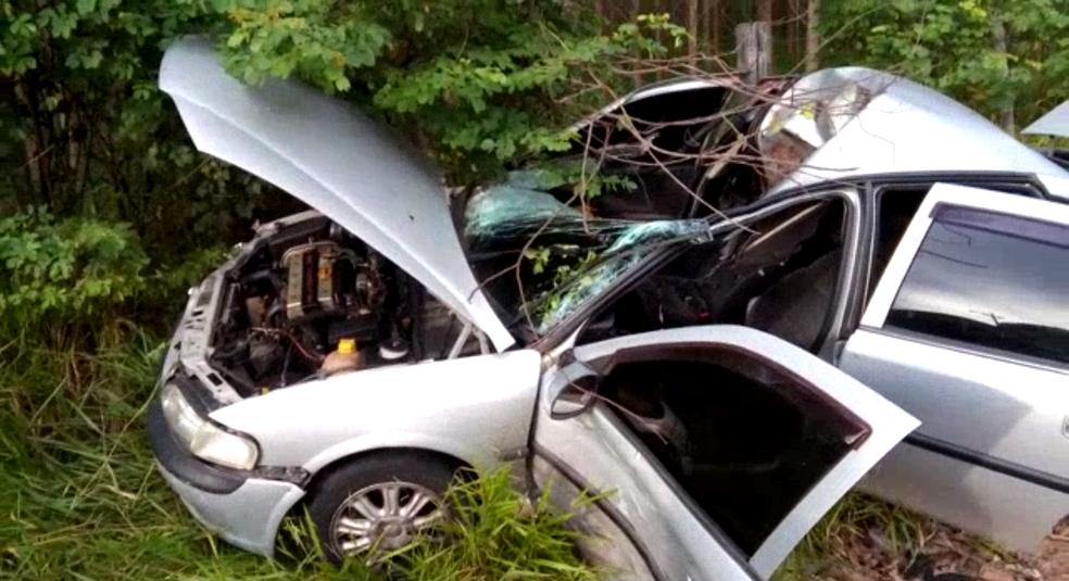 Carro ficou destruído após colidir com o cavalo na zona sul de São José (Foto: Rafael Azevedo/ Vanguarda Repórter)