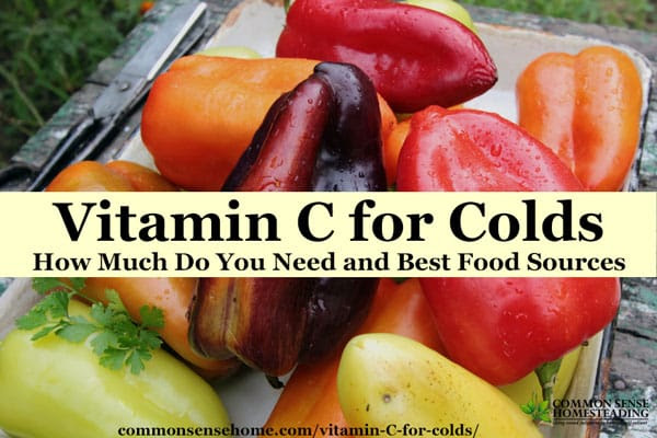 Vitamin C for Colds - How Much Do You Need and Best Food ...