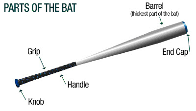 The Components Of A Wooden Baseball Bat What Are All Of The