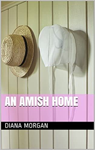 Book 2 An amish Home
