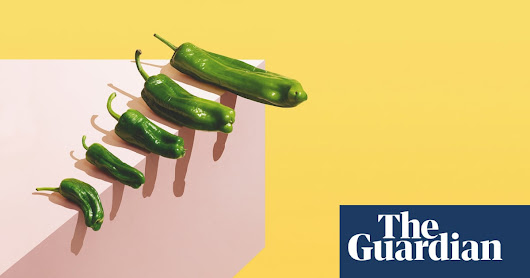 'I wanted a truncheon in my pants': the rise of the penis extension | Life and style | The Guardian