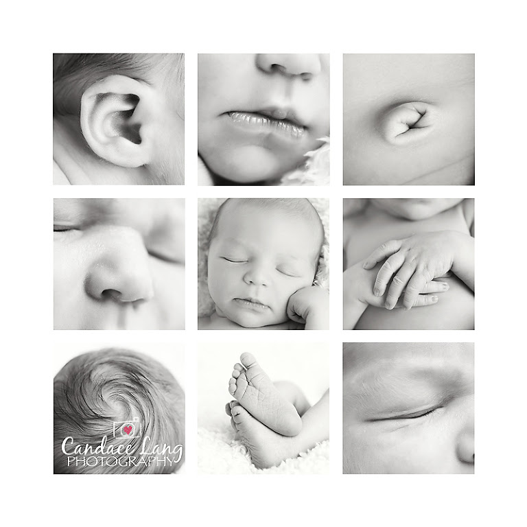 Newborn Baby Boy Photography Candace Lang Photography