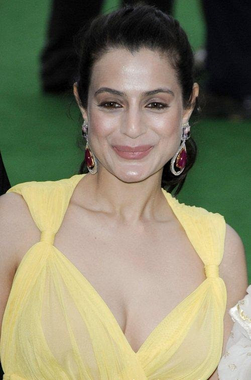 Ameesha Patel Shows Larger Assets in See-Through Dress at ...