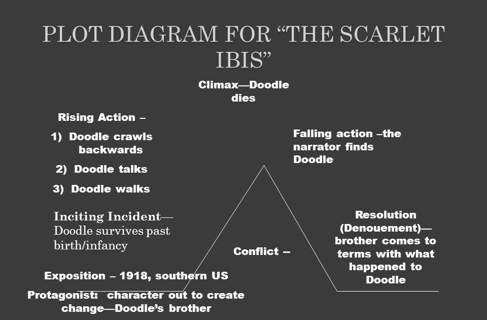 Wiring Diagram Database  The Scarlet Ibis Plot Diagram