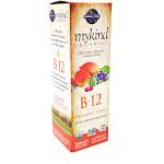 Kind Organic B-12 by Garden Of Life - 2 Ounces
