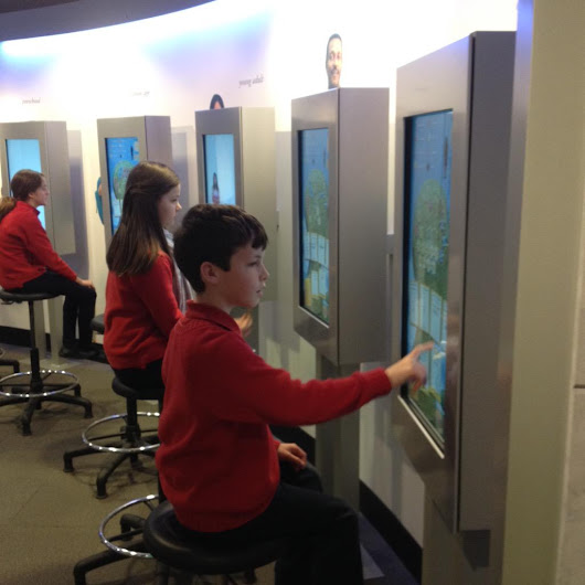 "BSW on Twitter: ""Year 6 #learning about #climatechange @koshlandscience #dcmuseums """