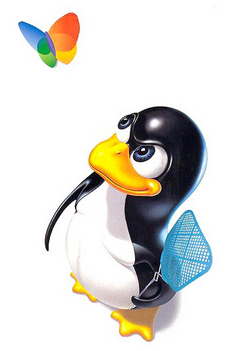 Linux kills windows