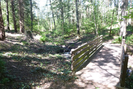 New Park at Crowell Woods | Parks & Trails | THPRD