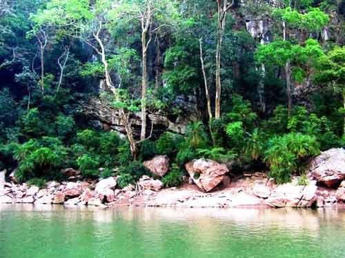 Los 10 bosques más hermosos de China 6