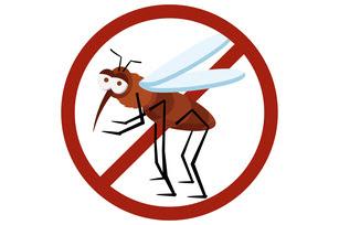 Prefeitura de Cidade Ocidental terá de adotar medidas urgentes para combate ao Aedes aegypti