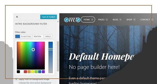 Colorizing page intro in theme customizer