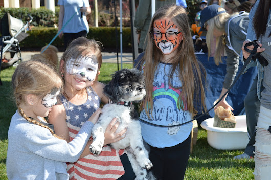 RoverWorks at The Grove Raises Thousands for Local Animal Rescues - The Grove