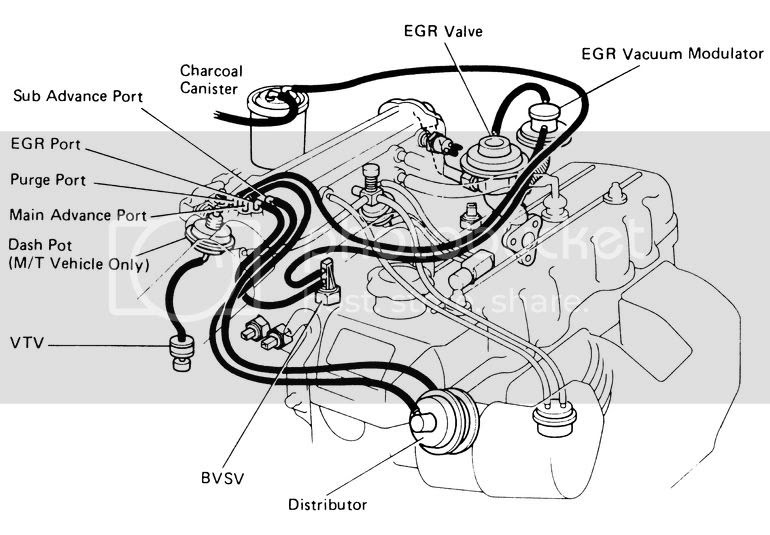 Kevin Durant Tattoo  22re Vacuum Diagram