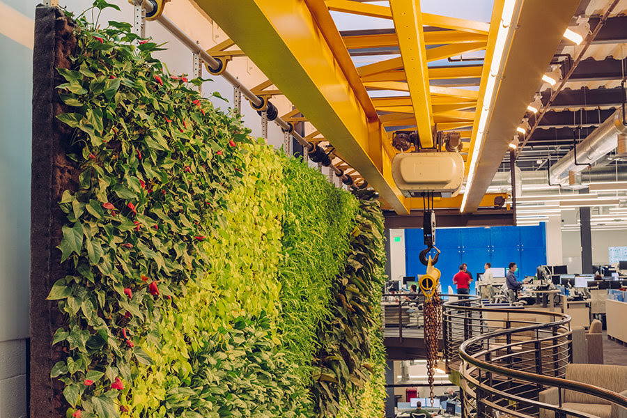 The two-story living wall – which hangs from a crane left over from the building's previous life as an industrial warehouse – is home to 8,000 plants from 14 different species. They include several varieties of philodendron, orchid, and fern.