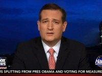 Cruz: NSA Reforms 'Strengthened' Ability To Go After Terrorists, Intel Agencies Said So
