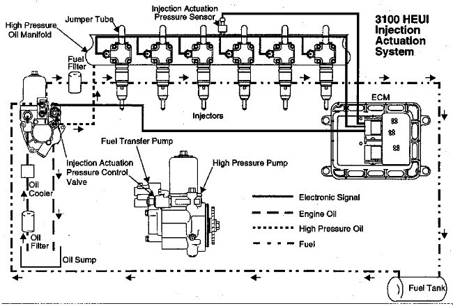 31 Caterpillar 3116 Fuel System Diagram