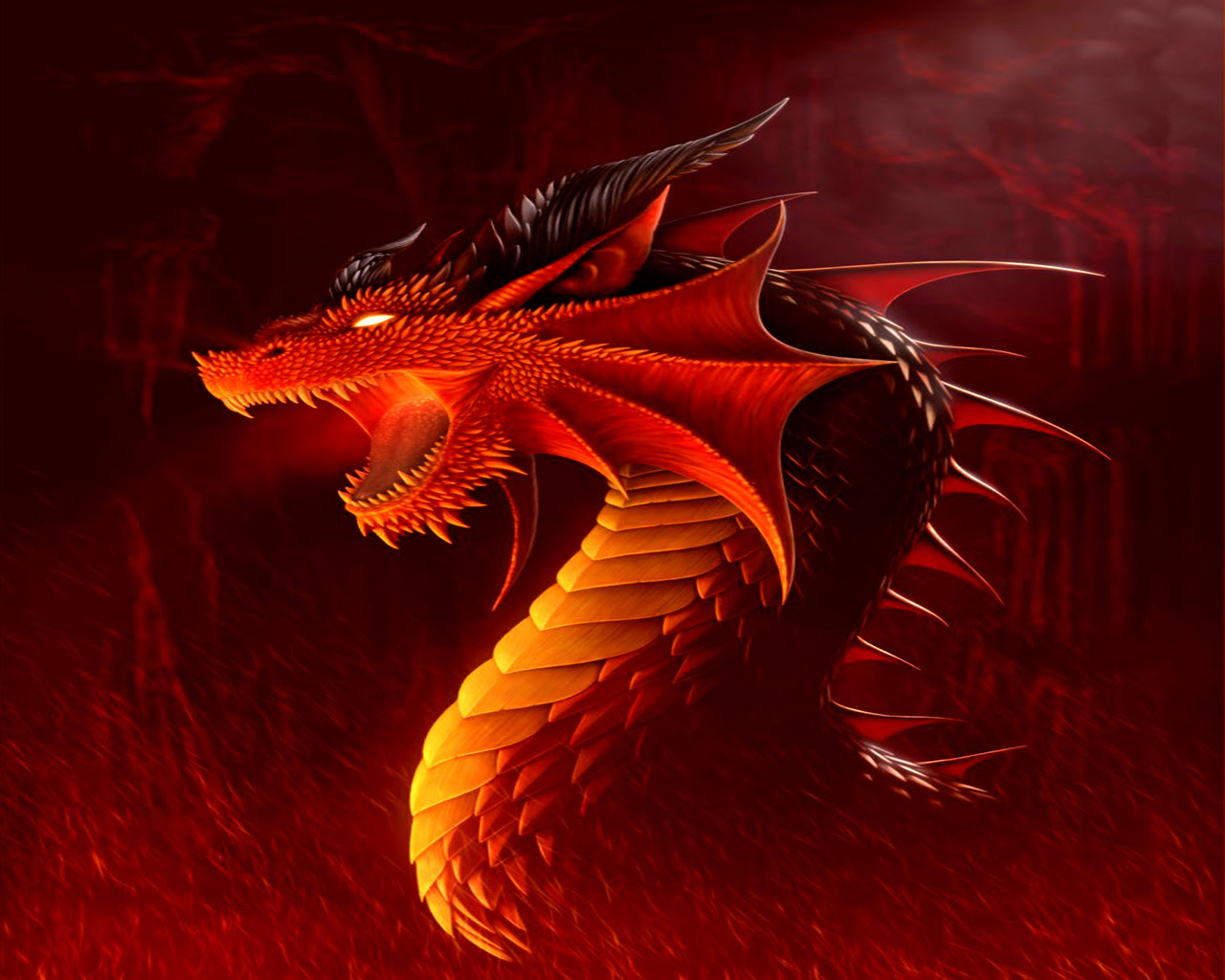 Dragon Wallpaper Dragoes Wallpaper 13975553 Fanpop