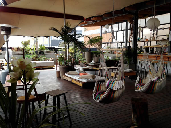 Review: The green walls are alive at Living Room in ...