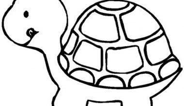 Kaplumbağa Boyama Sayfaları Sınıf öğretmenleri Için ücretsiz özgün