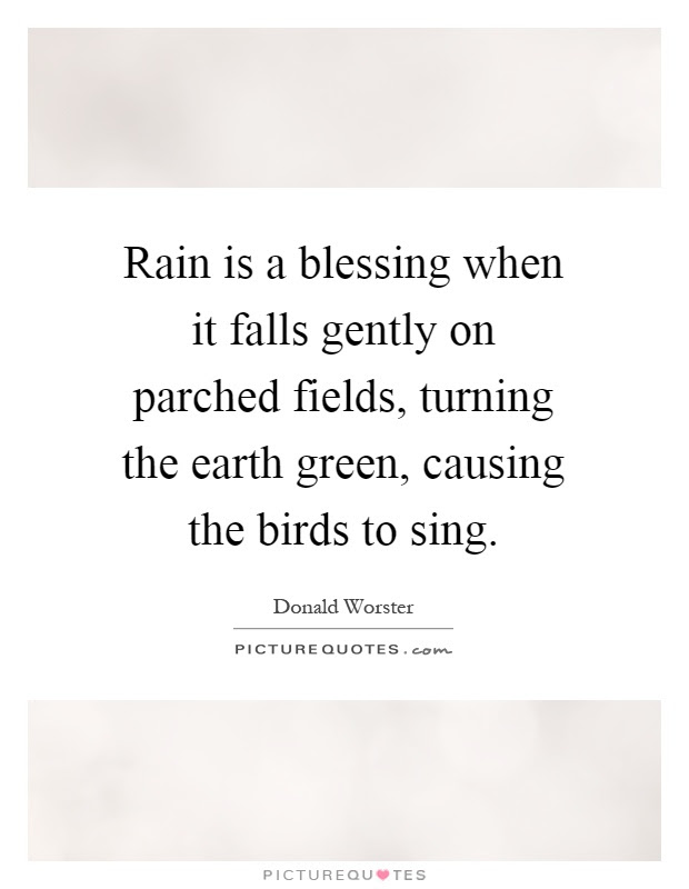 Rain Is A Blessing When It Falls Gently On Parched Fields