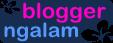 Blogger Ngalam