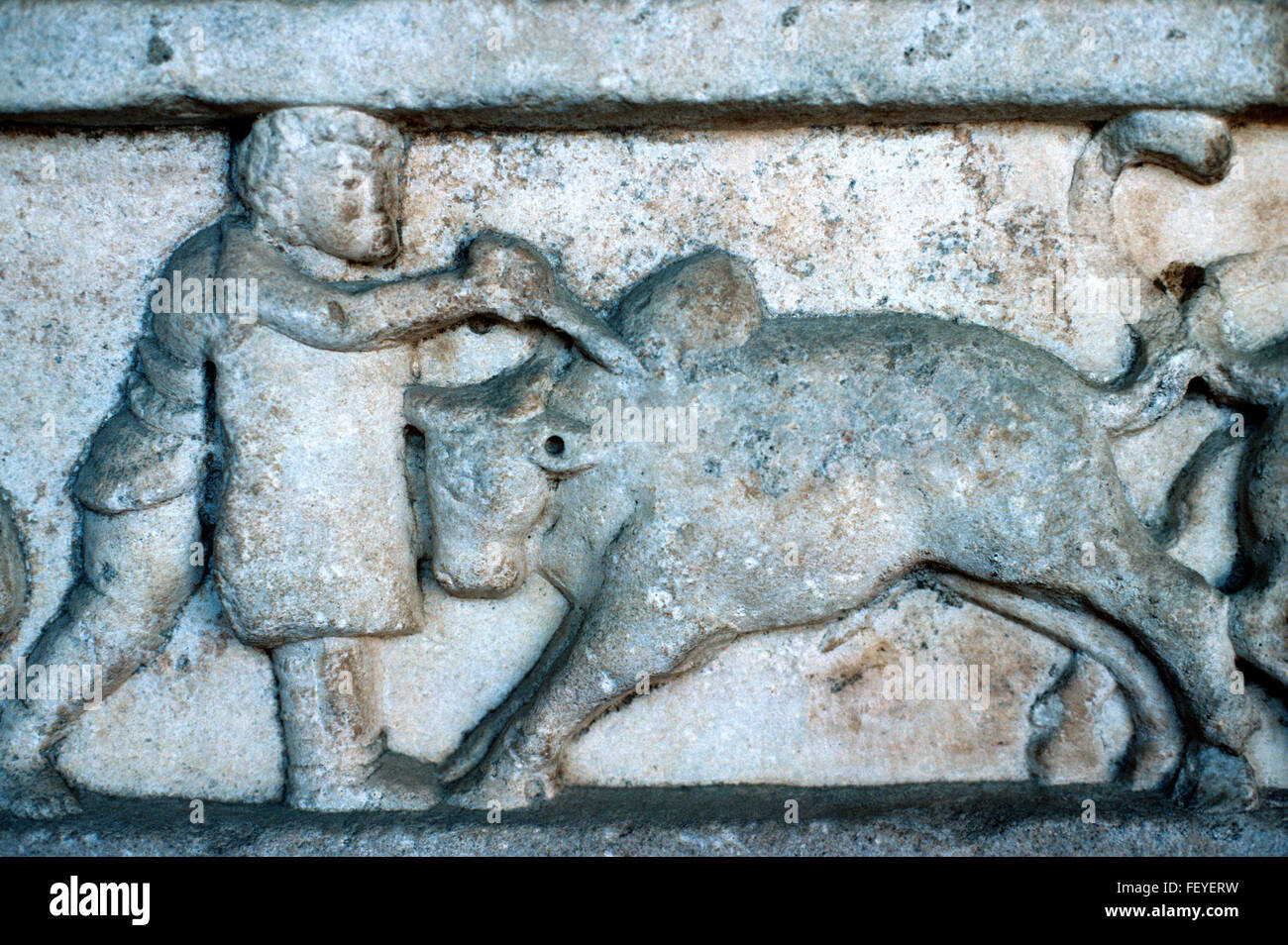 Ancient Greek or Roman Marble Carving or Bas-Relief of a Gladiator Fighting a Bull, Pergamon, Turkey Stock Photo