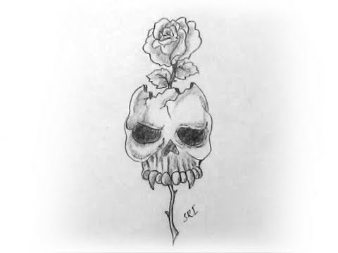 Skull With A Rose