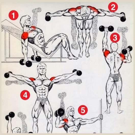 2 Weeks Shoulder Workout To Define Your Muscles