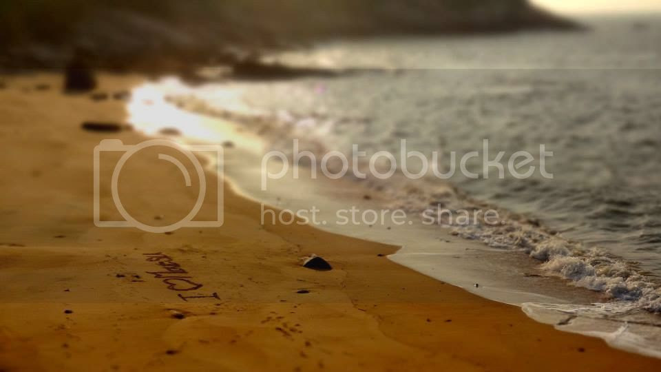 photo 1174969_10151932551576202_1745181108_n.jpg