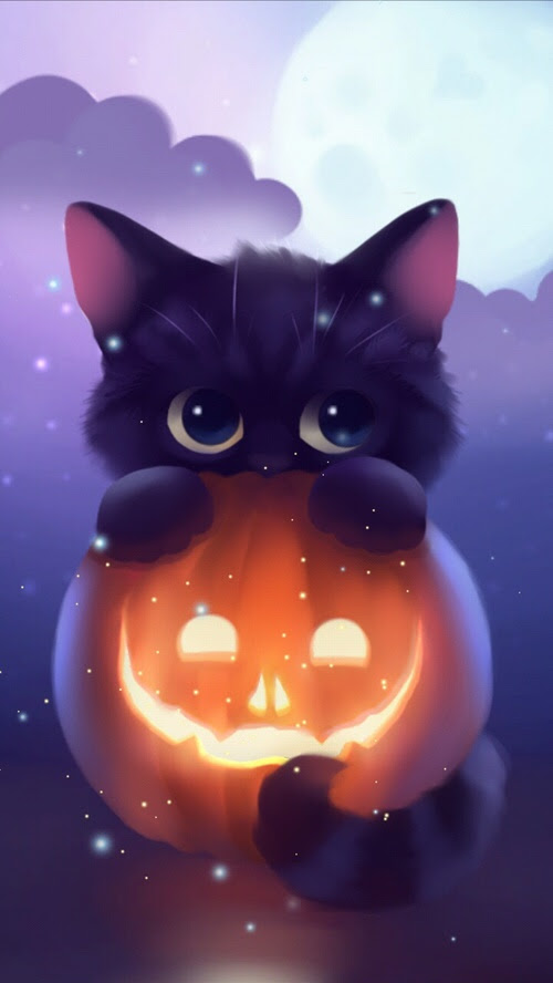 HalloweenKittenPumpkinArtiPhoneWallpaper  iPhone Wallpapers