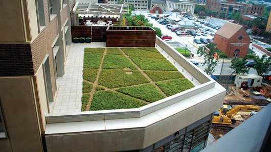 What you need to know about green roofing - Garden Center Magazine
