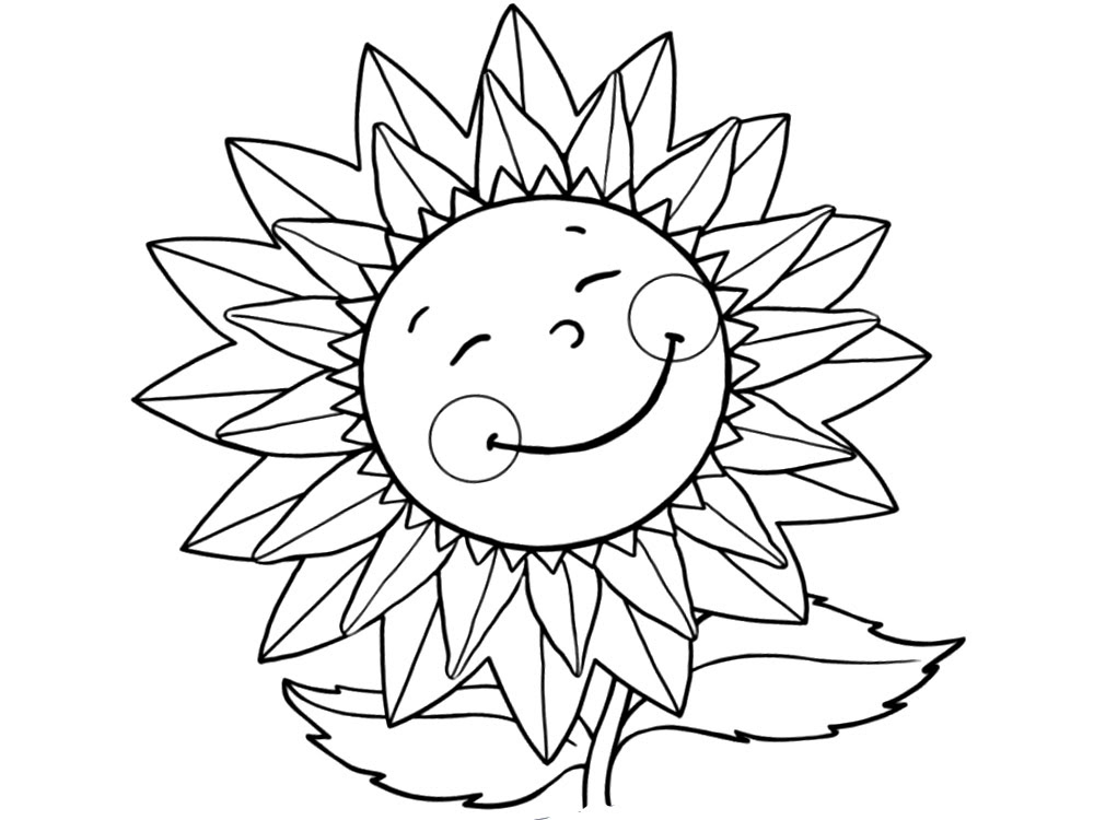 Flores Dibujos Para Colorear E Imágenes