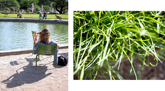 Thoughts about my bloggy adventure in the Tuileries gardens