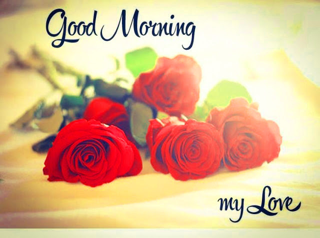 Good Morning Red Roses With Quotes Hindi