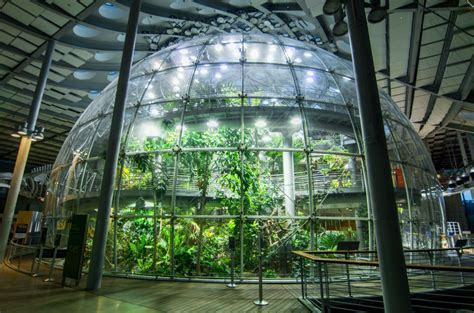 March 2017: Programs and Events at the California Academy