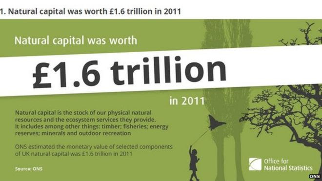 ONS infographic on the value of natural capital