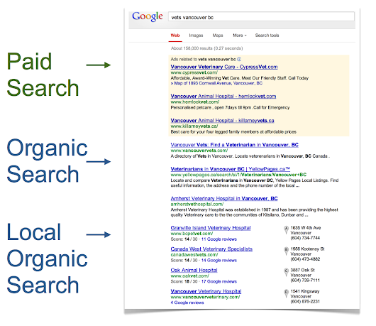 Paid Search vs Organic Search | Insights | Relentless Technology
