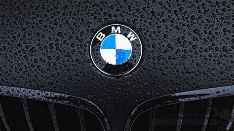 Bmw logo wallpaper   (87011)