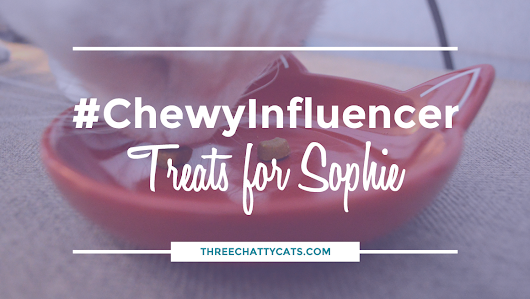 Treats for Sophie #ChewyInfluencer | Three Chatty Cats
