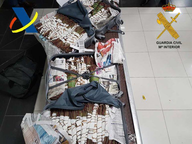 Alijo del estupefaciente Khat incautado en el aeropuerto de Hondarribia.