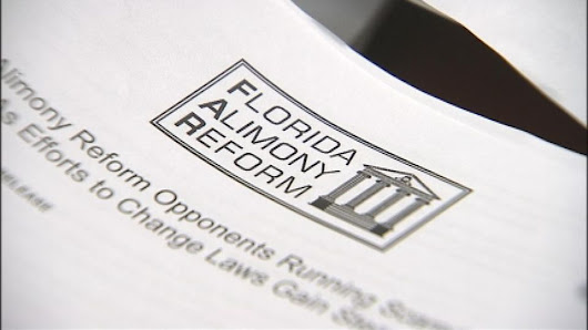 Tampa Family Law Lawyer on Reform