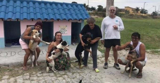 5 perros callejeros les robaron el corazón y los vecinos decidieron construir un refugio comunal