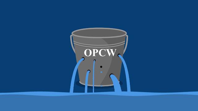 WikiLeaks Releases Even More OPCW Douma Documents