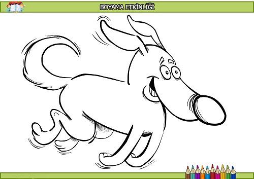 Koşan Rintintin Köpek Boyama Etkinliği Meb Ders