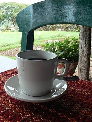 café du Chiapass.jpg