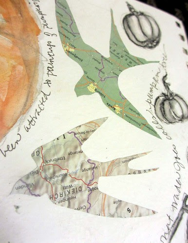 more pumpkins ~ from my sketchbook