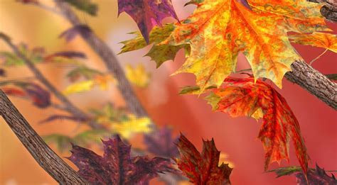 Top 11 Autumn Live Wallpapers for Android