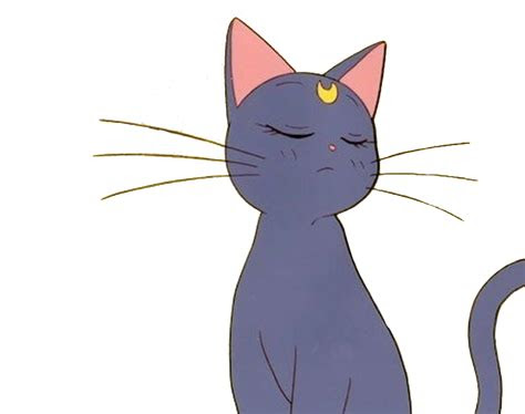 anime cat sailormoon aesthetic tumblr sticker freetoedi