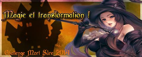 http://www.mort-sure.com/t7451-2014-challenge-n3-magie-et-transformation
