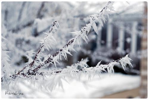 Day 17 - Beautiful Ice